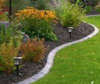 App Garden Borders Ideas APK for Windows Phone | Download ...