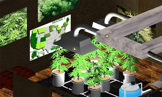 3d Grass Wallpaper Apk Download Hydro Weed Grow Apk On Pc Download Android Apk
