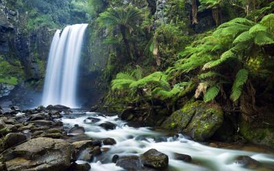 Waterfall Live Wallpapers - Android Apps on Google Play