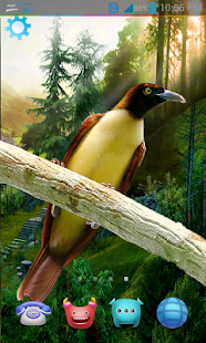 Falling Money Live Wallpaper Apk Download 3d Birds Live Wallpaper Hd Apk To Pc Download