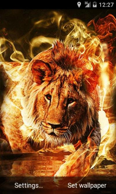 Fire Lion Live Wallpaper - Android Apps on Google Play