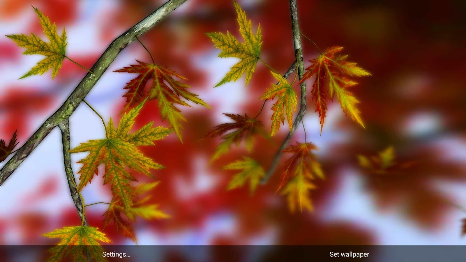 3d Live Wallpaper Parallax Autumn Leaves In Hd Gyro 3d Parallax Wallpaper Android