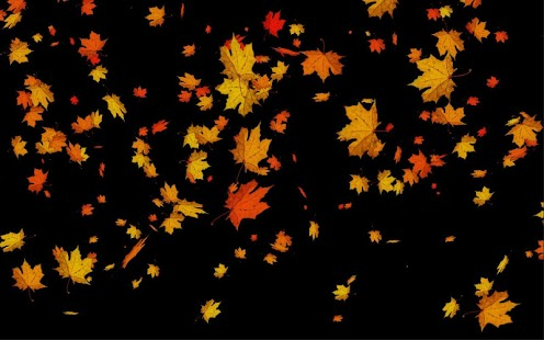 Autumn Falling Leaves Live Wallpaper Leaves Falling Free Live Wp Android Apps On Google Play