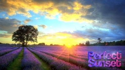 Perfect Sunset Live Wallpaper - Android Apps on Google Play