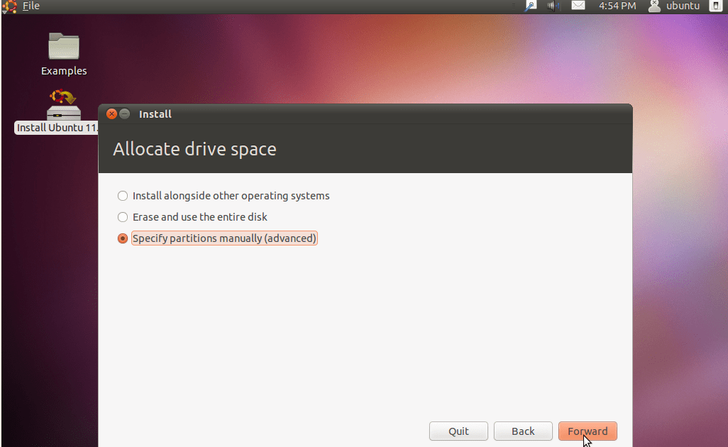 Manual Advanced Partitioning In Ubuntu Installer