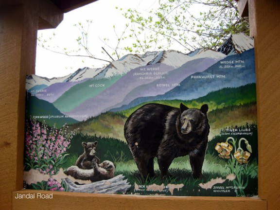 Bears in Whistler, BC