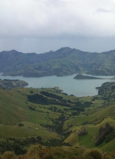 Akaroa viewpoint
