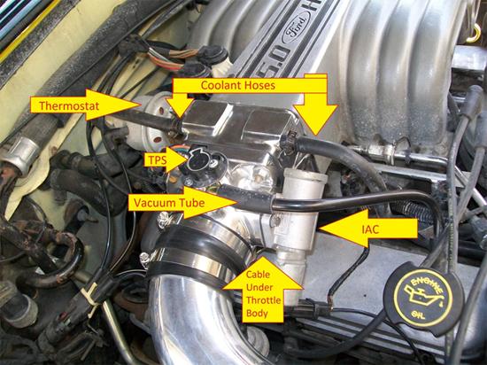 93 F150 5 0 Vacuum Diagram Wiring Diagram