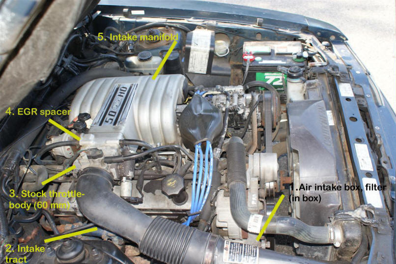 Fox Body Throttle Bodies - Facts  Fundamentals AmericanMuscle