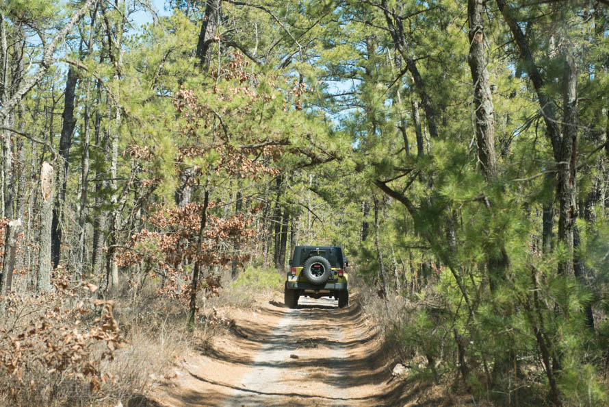 Choosing the Best Jeep Wrangler Tires for Off-Road  On-Road