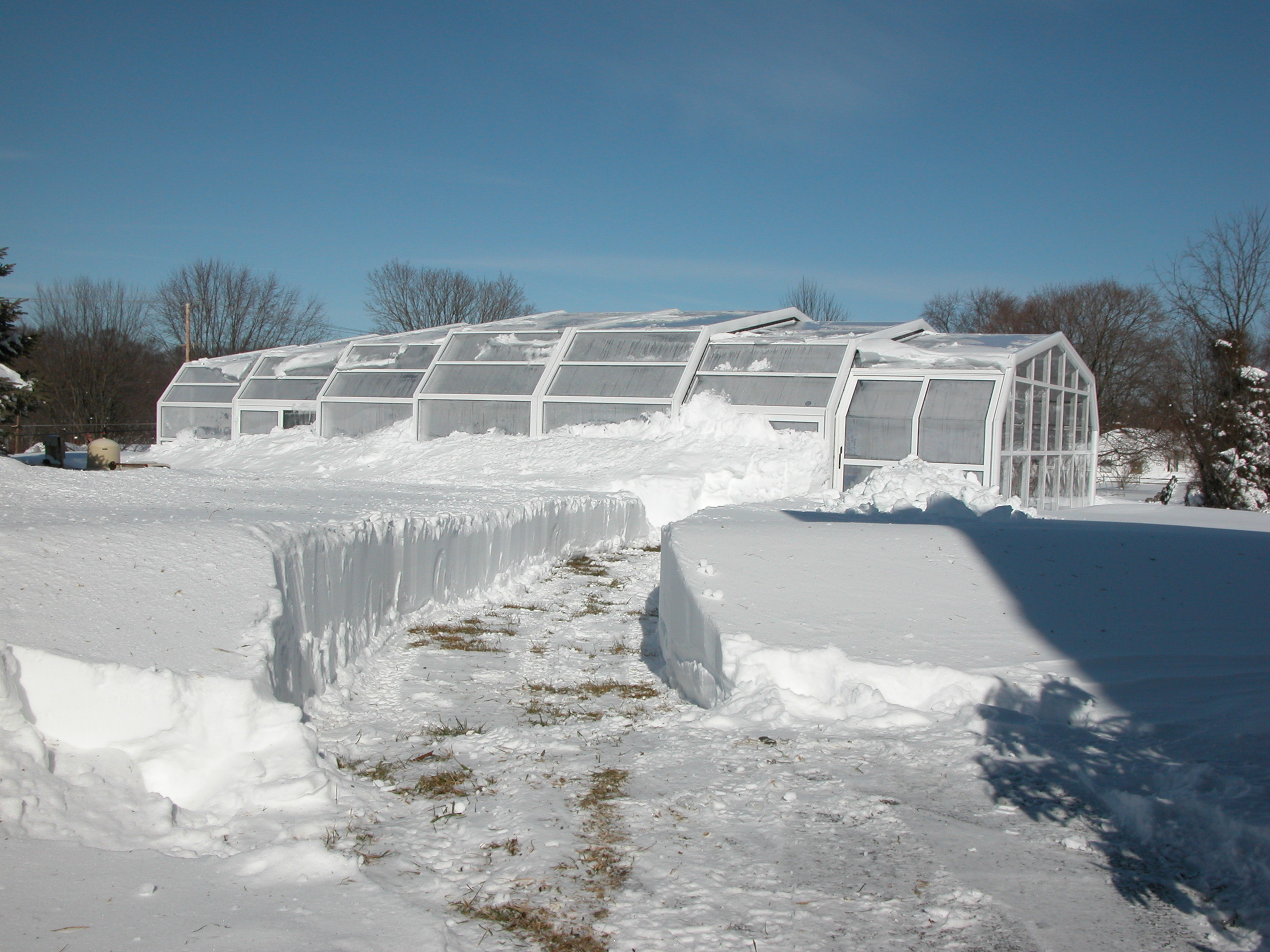 Bestway Pool Einwintern Clients Share How They Heat A Pool Enclosure Year Round