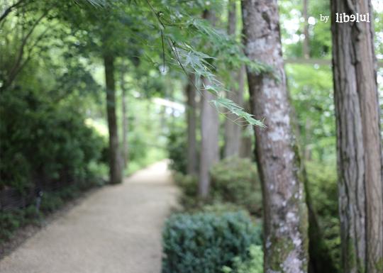 jardin-imaginaire-03-by-libelul
