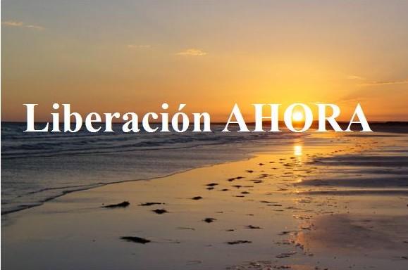 http://i0.wp.com/liberacionahora.files.wordpress.com/2010/08/banner-l-a3-e1281475040893.jpg?w=600