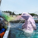 Genetically Engineered Beluga Whales Are Attacking Christian Families with Homosexual Chemtrail Water at Seaworld