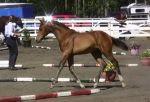 Florida inspection 2012 043