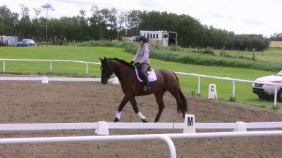 horse-show-2010-114