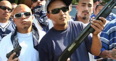 SHOCKING VIDEO: Study Shows How Criminals Are Getting Guns In Chicago!