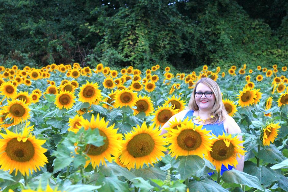 Molly in sunflowers