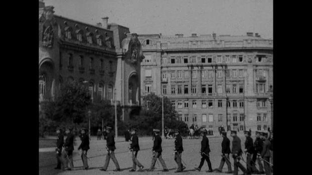 vienna 1919