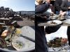 2012-03-hog-island-oyster-stephanie-hua-lick-my-spoon-10-Edit