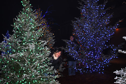 It's beginning to look a lot like Xmas! (Longwood Gardens, PA)