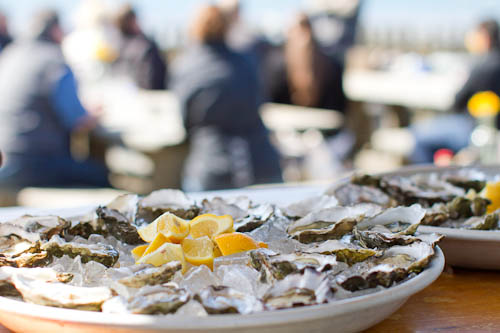 Sweetwater Oysters at Hog Island Oyster Farm