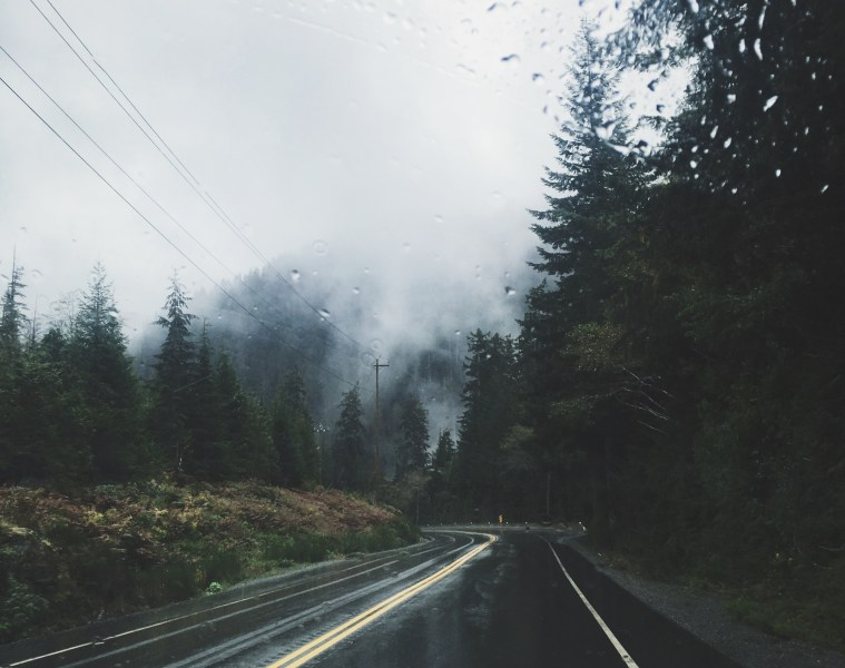 Best drive Vancouver Island.