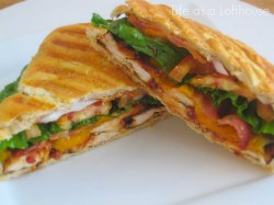 Small Of How To Make A Panini