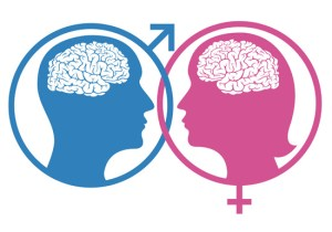 men and women are different, brain,