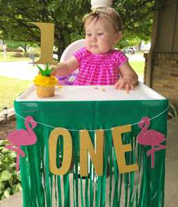 Evie's First Birthday Bash – Hawaiian Luau Style!