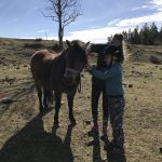 Barnens på-landet-dröm