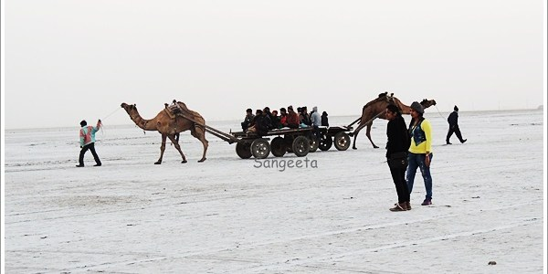 Scenes from the Salt Desert: Great Rann of Kutch, India