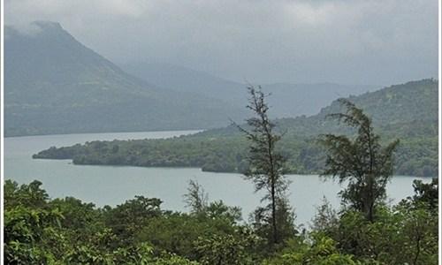 Monsoon Greens in Mulshi Lake, Pune, India