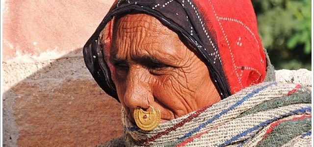 Wordless Wednesday : Bishnoi Matriarch