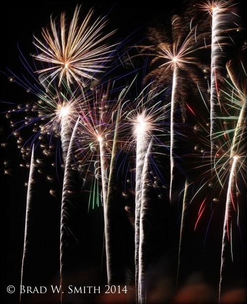 spiders and rocket fireworks against black sky