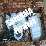 Serenata Thumbnail