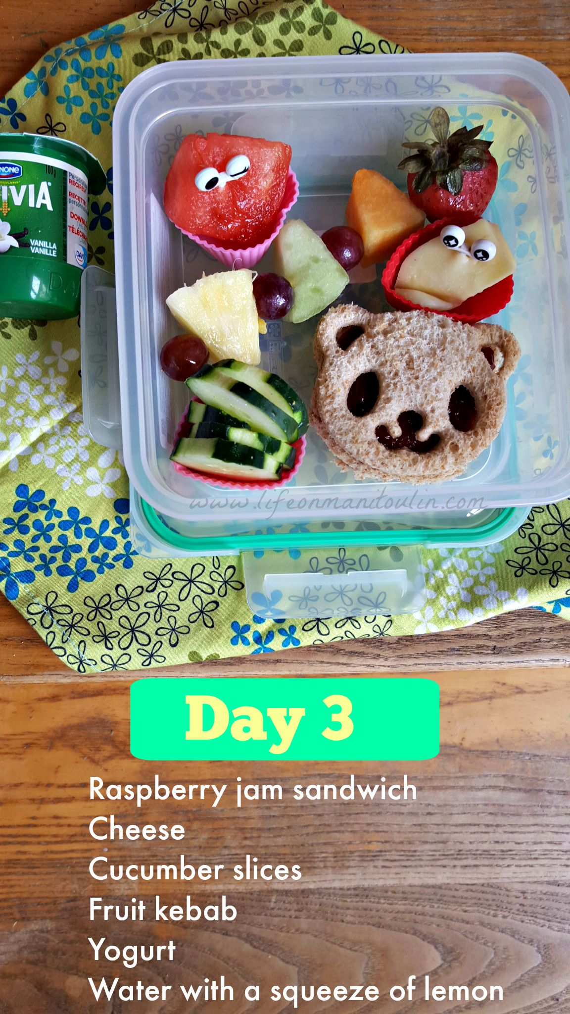 Lunch In A Box How To Pack A Bento Box Lunch In A Snap Life On Manitoulin