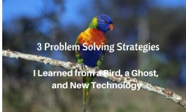 3 Approaches to Problem Solving I Learned From a Bird, a Ghost and New Technology
