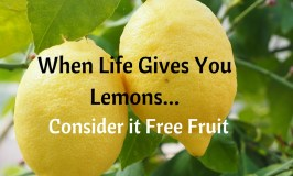 When Life Gives You Lemons…Consider it Free Fruit