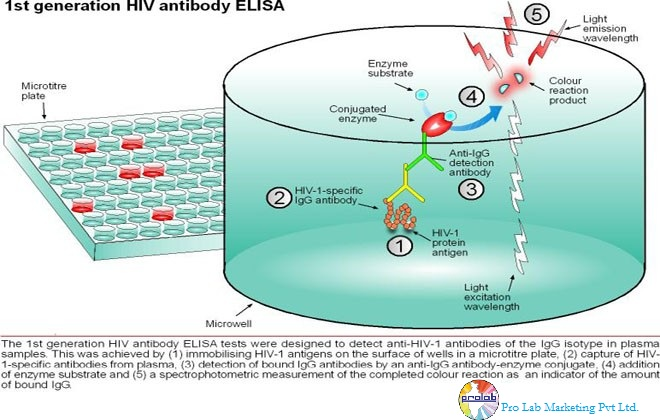 Process of ELISA Kits Welcome To Life Science Products Blog Outher