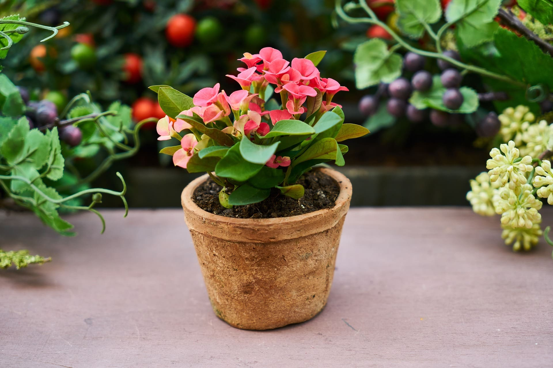 How To Make Beautiful Flower Pots At Home 9 Spring Gardening Tips For A Beautiful Yard In Frisco