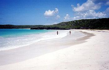 Corcho Beach in Vieques island, Puerto Rico.