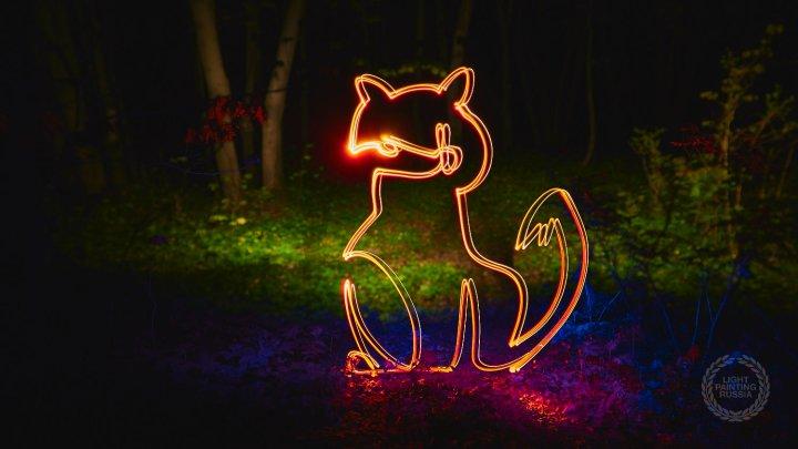 Stop fox hunting