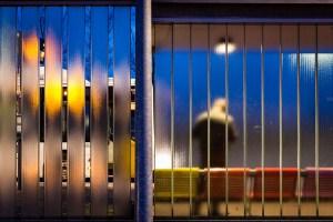 lightroom catalogus verplaatsen bushalte terneuzen