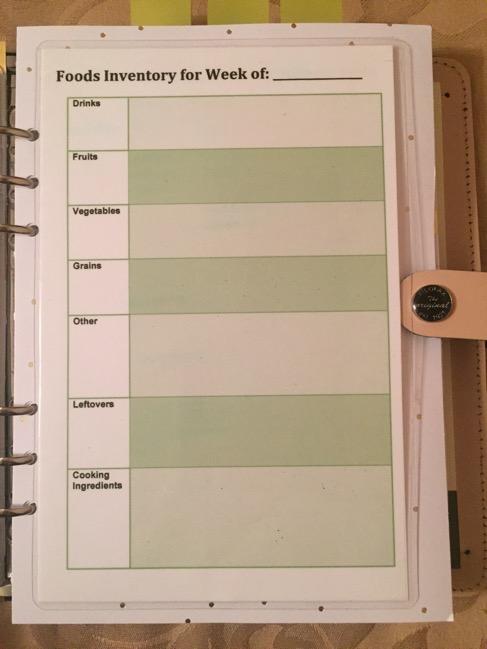 Filofax, original Nude, planner, planners, inserts, A5 size