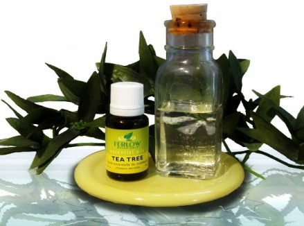 tea_tree_oil_web_1