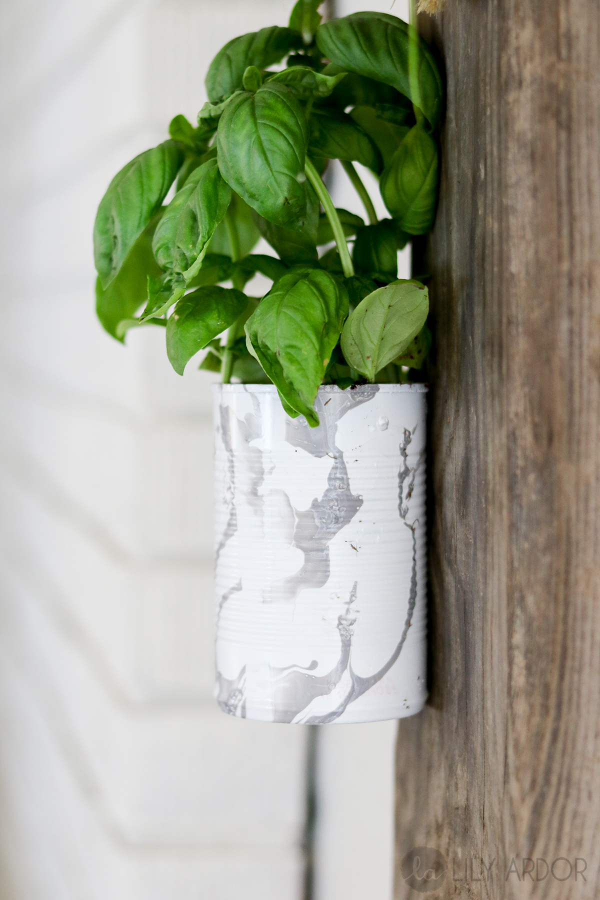 Herb Wall Diy Herb Wall Planter Compact And Recycled Lilyardor
