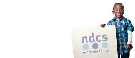 ndcs campaigns