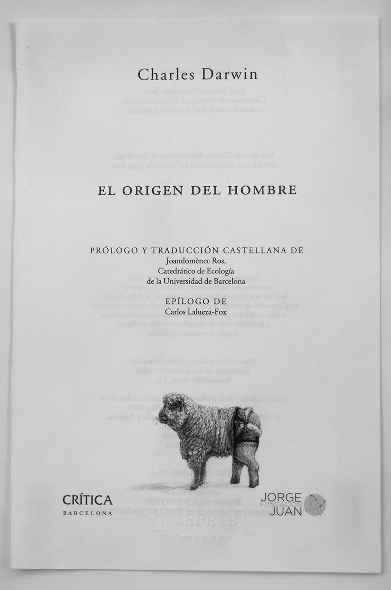 El-origen-o-descendencia-del-hombre-04-(Margarita)