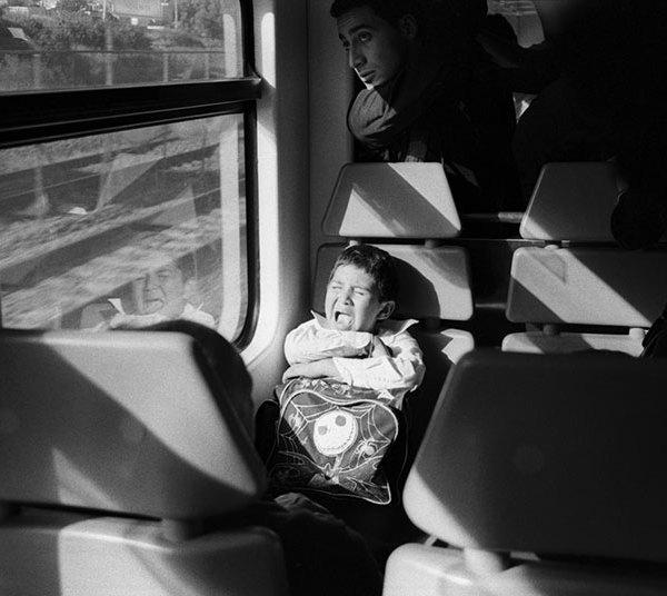 limulus_transporte_publico_2